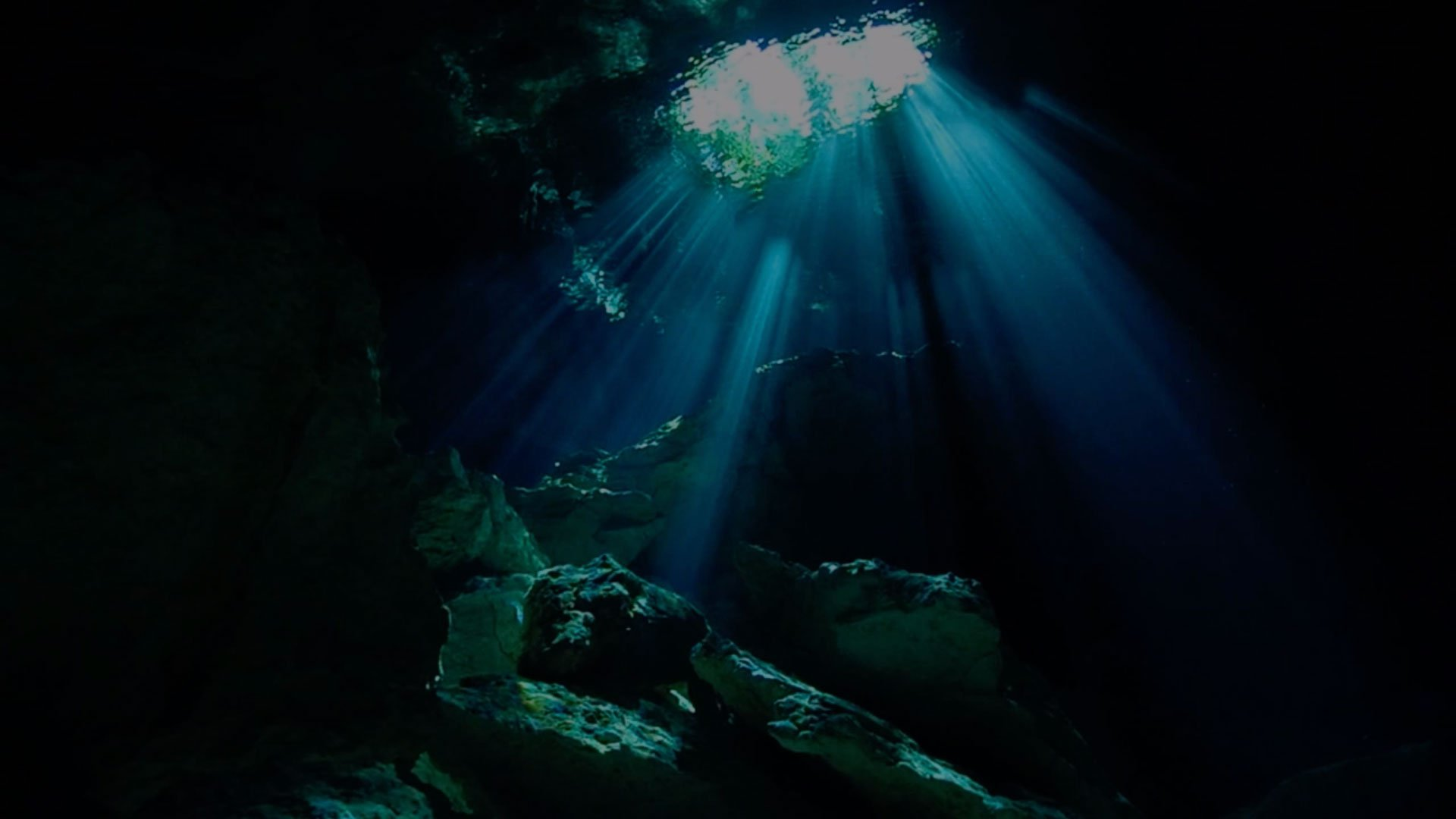 magical cenote diving tour in mexico