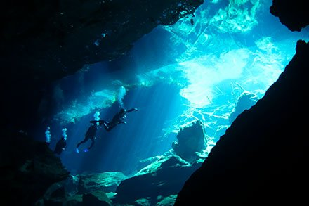 cenote diving the highlight