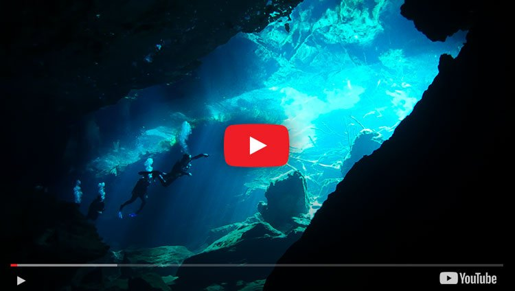 Video of cenote diving in tulum mexico with the cenote guy