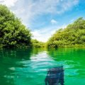 Casa Cenote with the cenote guy tours