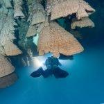 Cenote ZApote - Hells bells