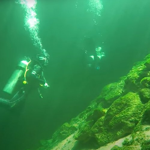 cenote diving in calavera and dreamgate