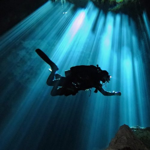 cenote diving prices