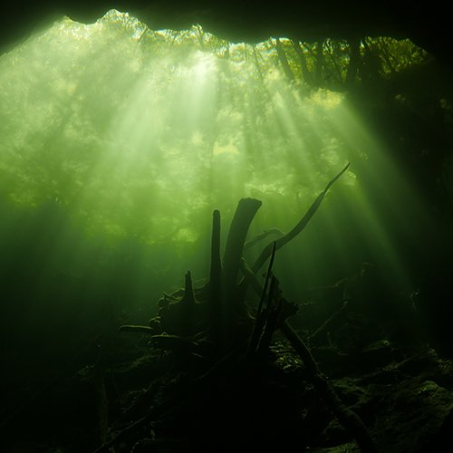 Cenote Diving in Little brother